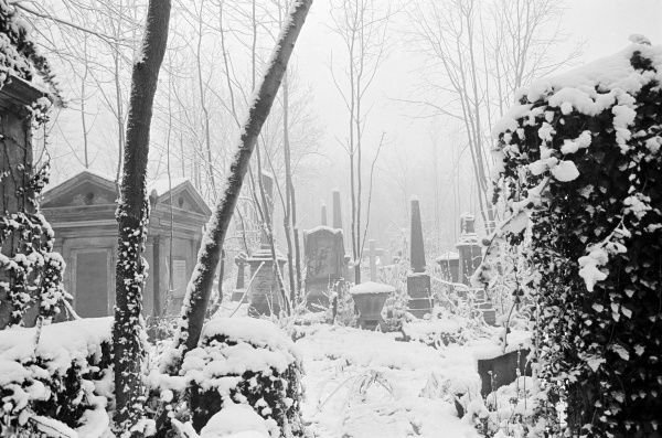 HIGHGATE CEMETERY, Hampstead, London. Snow covering the West Cemetery. Photographed by John Gay in winter 1982