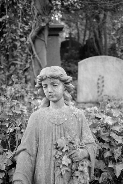 HIGHGATE CEMETERY, Hampstead, London. The statue of a girl holding flowers amid the tombs of the West Cemetery. Photographed by John Gay in Spring 1995