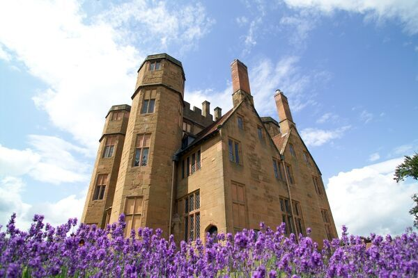 KENILWORTH CASTLE, Warwickshire. Exterior view of Leicester's Gatehouse with lavender flowers in the foreground
