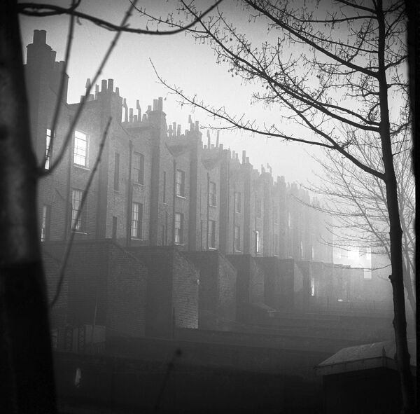 Looking along a tree-lined street towards the rear elevation of a row of terraced houses on a misty evening in winter, either in Islington or Shoreditch, London. Photographed by John Gay. Date range: 1960 - 1965