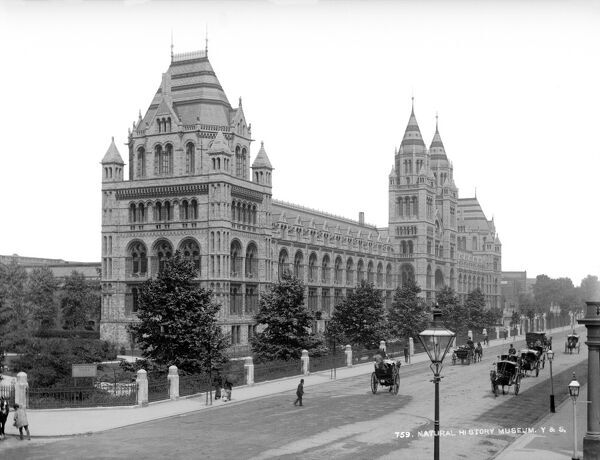 NATURAL HISTORY MUSEUM, London. A perspective view of the museum from the road with horse-drawn vehicles. The building was designed by Alfred Waterhouse and built in 1881. Late 19th century photograph by York and Son