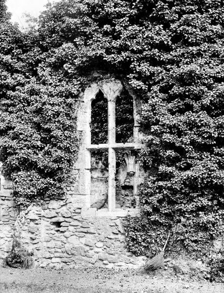 NETLEY ABBEY, Netley, Hampshire. Ivy covering the abbey frames a window in the day room. Founded in the 13th century, Netley is the most complete surviving Cistercian monastery in southern England. Even in ruins, the abbey continued to be influential