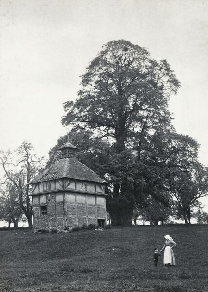 Dovecote, Oddingley, Worcestershire, 14 May 1894