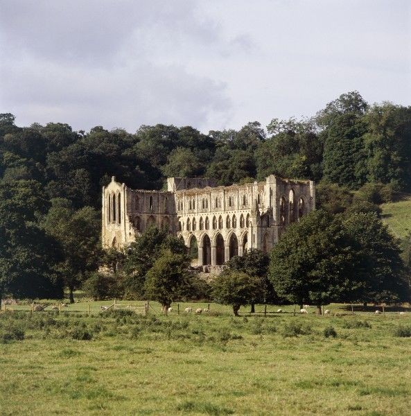 RIEVAULX ABBEY, North Yorkshire. General view of the picturesque setting that surrounds the Abbey