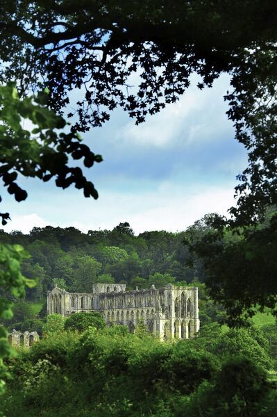 RIEVAULX ABBEY, North Yorkshire. General view through the trees