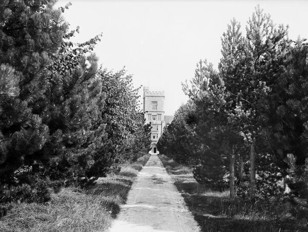 ROYAL AGRICULTURAL COLLEGE, Cirencester, Gloucestershire. General view of the main entrance and tower from the tree-lined approach road. Photographed in 1883 by Henry Taunt