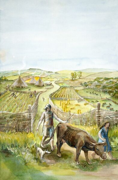 Reconstruction drawing of imaginary rural landscape, 2000 BC by Judith Dobie, English Heritage Graphics Team. Farming