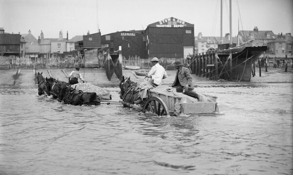 Shoreham By Sea, West Sussex. A partly submerged horse-drawn ballast cart in the sea off Shoreham Harbour, in front of the premises of Stow and Son Yacht Builders. Photographed by E J Bedford between 1905 and 1925