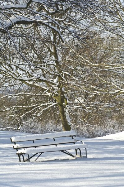 ELTHAM PALACE, London. A snow covered bench in the grounds