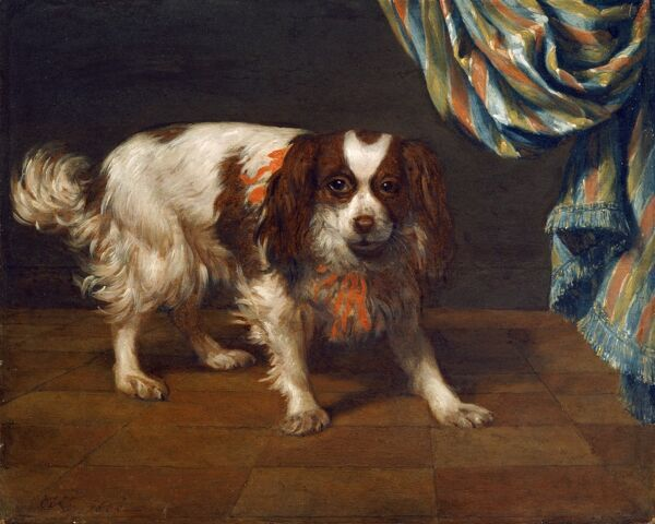 "MARBLE HILL HOUSE, Twickenham, Richmond, Middlesex. ""A King Charles Spaniel"" 1665 by Gysbert VAN DER KUYL (active 1656-1669)"