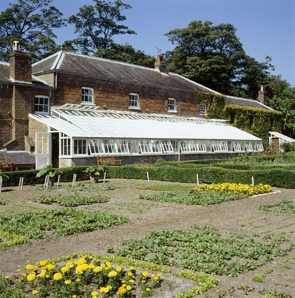 WALMER CASTLE AND GARDENS, Kent. View across the early season order beds in the kitchen garden towards the greenhouse