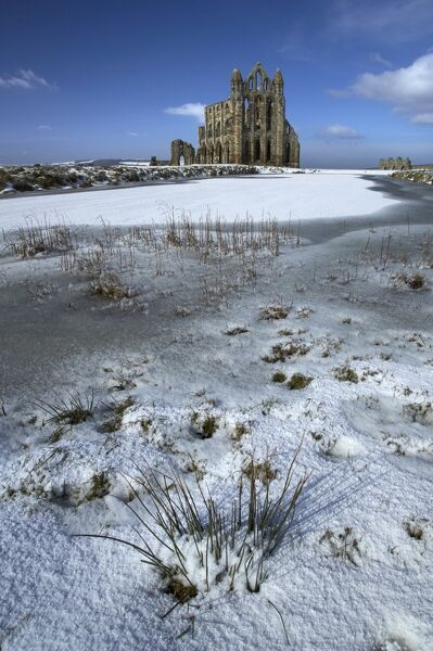 WHITBY ABBEY, North Yorkshire. Snow lying across the ice covered pond with tufts of grass