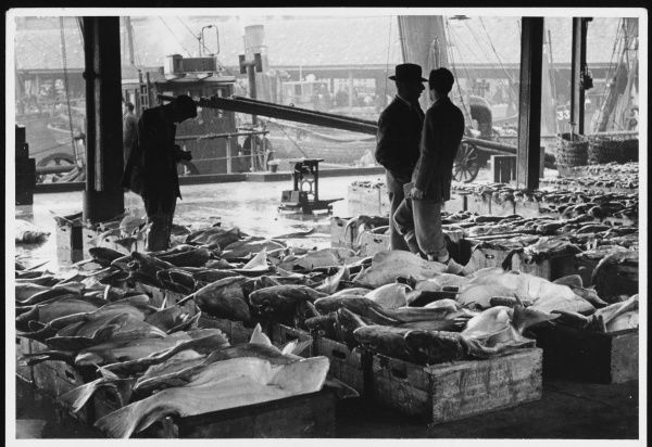 Market traders chatting amongst the wooden crates of fresh fish at Aberdeen Fish Market, Scotland