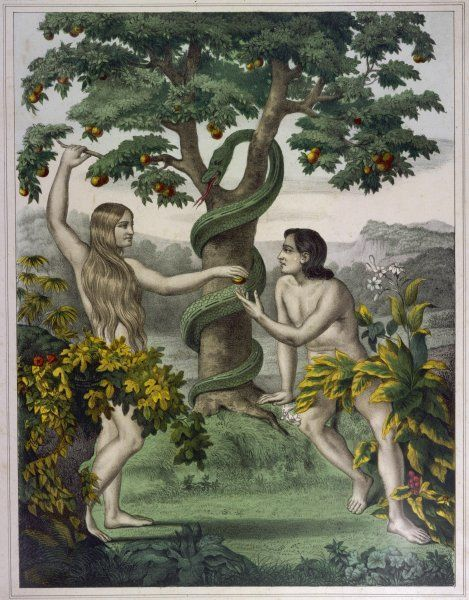 Conveniently placed foliage conceals the private parts of Adam and Eve, of which they are about to become modest thanks to the apple Eve is inviting Adam to taste