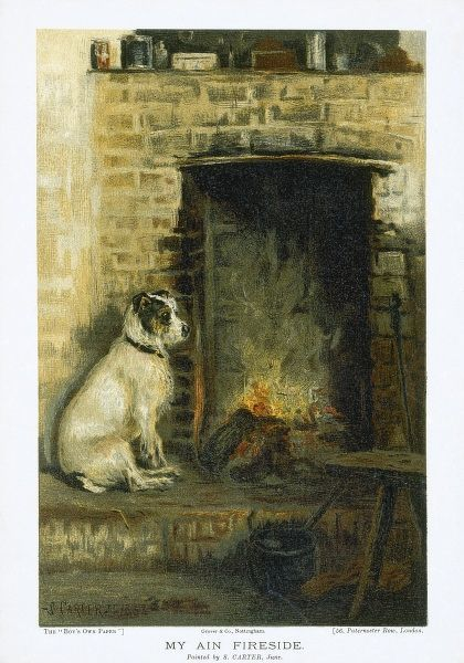 An illustration of a terrier sitting peacefully by the side of a fire