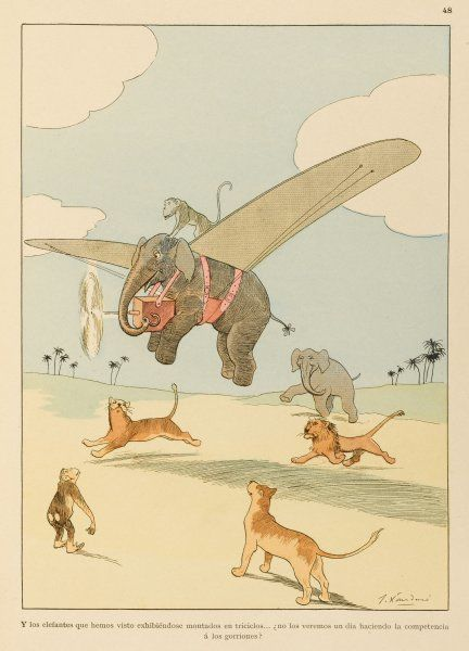 Why should mankind hog the blessings of aviation ? You'll think you've seen everything when you've seen an elephant fly !