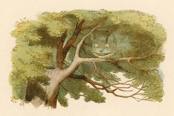 Alice and the Cheshire Cat -- the grinning cat, with whom Alice has just had a conversation, fades away as it sits on a tree branch