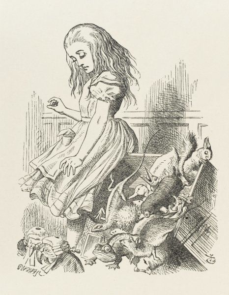 Alice upsets the jury