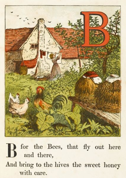 'B' - is for the Bees, that fly out here and there