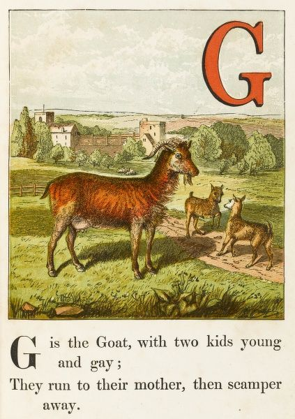 Goat and two kids in rural English setting