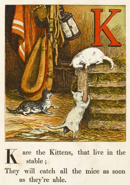 'K' are the kittens, that live in the stable