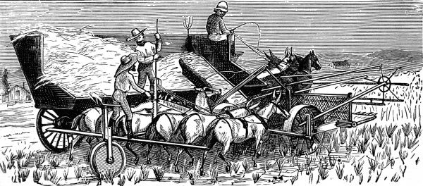 A large machine pulled by horses and pushed by six mules travels through the fields heading the wheat