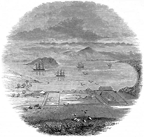 Engraving showing the anchorage at Yerba Buena in the bay of San Francisco, Alta-California, with several ships and sea birds, 1846. There were five missionary establishments there at this time, named the missions of Dolores, Santa Clara, St Jose