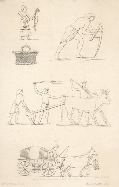 A variety of Ancient Egyptian Farming scenes, and a horse- pulled wine cask, originally from the Alps