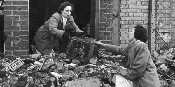 Women of the Animal Rescue Squad saving a cat from the rubble during World War II