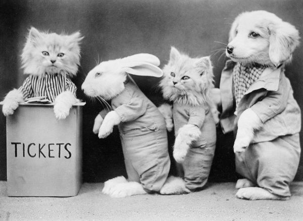 A rabbit, a cat and a dog queueing for tickets sold by a cat. Date: early 1930s