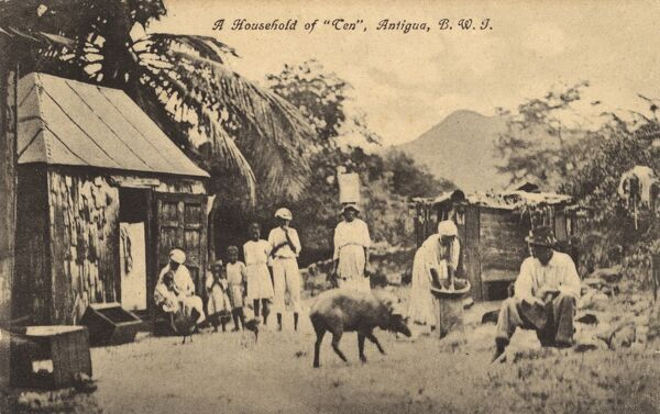Antigua, West Indies - A household of 10 (which includes the pig!!) Date: circa 1910s