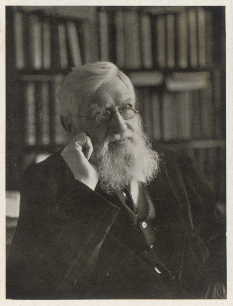 ALFRED RUSSEL WALLACE Naturalist