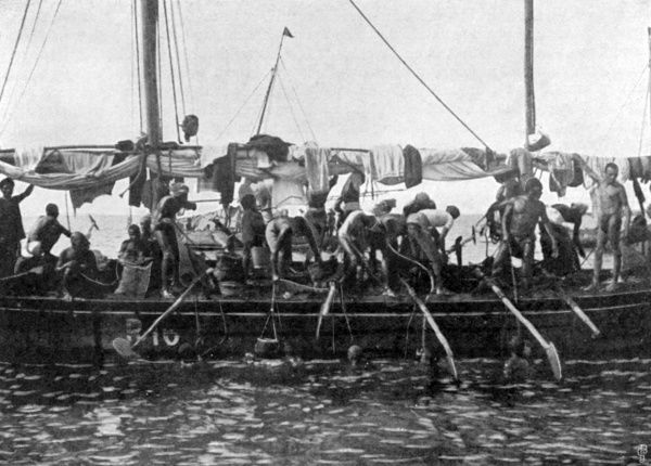Arab pearl divers at work. As a result of long practice, they are able to remain underwater for some minutes, during which time they collect the pearl oysters from the ocean bed. Date: 1903