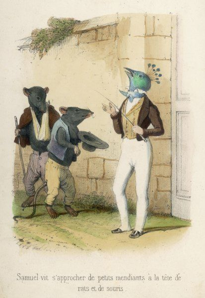 The aristocratic peacock turns up his beak when importuned by beggarly rats