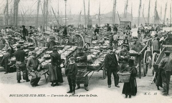 The arrival of the catch - Boulogne-sur-Mer - destined for the 'Criee' - the wholesale fish auction (market)