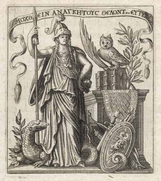 The Greek goddess of wisdom, with her owl and a a dragon