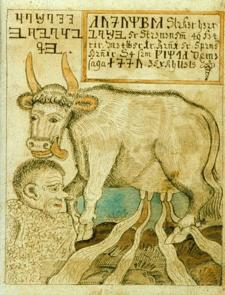 Audhumbla, the cow, in the Norse mythology, that nourished Hymir, and lived herself by licking the hoar-frost off the rocks