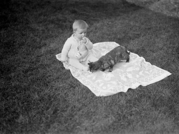 A baby and a cat chilling out together on a rug. Date: 1930s