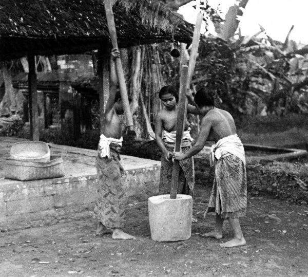 Girls grinding sago flour, Bali, Indonesia. Date: 1930s