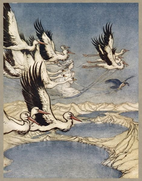 'EARL MAR'S DAUGHTER' She is carried off to her lover (who lives with her as a dove by day) by a a flight of swans (really her lover's brothers and their men). Date: traditional