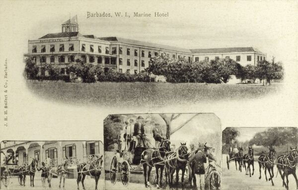 The West Indies Hotel, Barbados. The card also features some horse teams and a carriage taking a group of tourists on a tour of part of this Caribbean Island circa 1908
