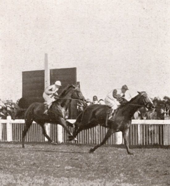 The British thoroughbred racehorse, Bayardo, winning at the Doncaster races
