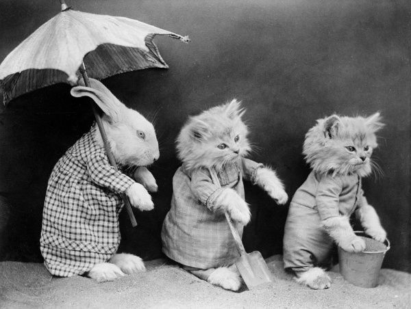 A rabbit holds a parasol while his kitten friends play with their buckets and spades in the sand. Date: early 1930s