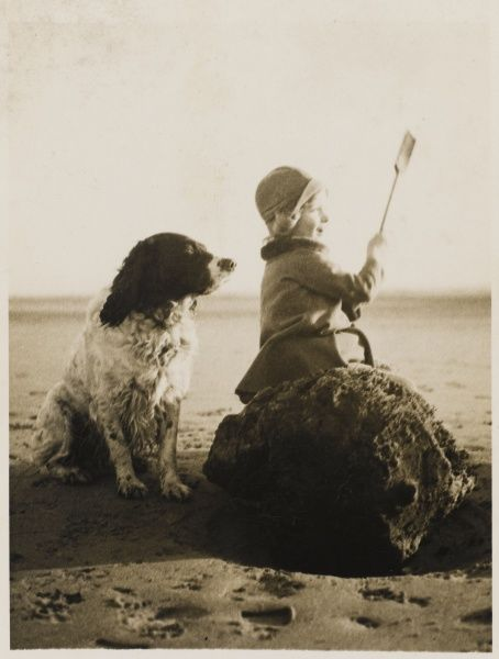 A little girl sits on a rock at the beach enjoying the sea air along with her pet Springer Spaniel