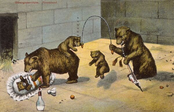 The reverse of this card reads: 'Even the bears have to learn how to skip in Switzerland - don't you think they are very clever?' A rather surreal fantasy card, showing a family of rather anthropomorphic bears in a zoo enclosure