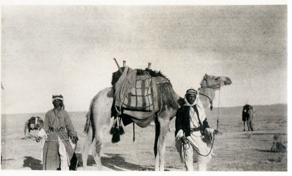 Two Bedouin men with a camel, in the desert somewhere in the Middle East
