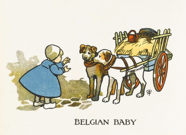 A typically Belgian child in a long blue gown, wearing a white little cap and clogs meets two dogs as big as her pulling a straw cart