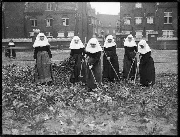 The 'Beguins', Belgian nuns, of the 'Beguinage' convent of Ghent, Belgium, digging and hoeing their garden vegetable patch