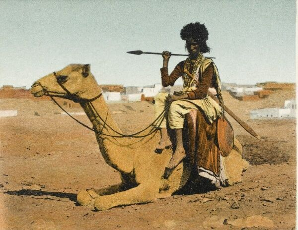 Bisharin Man with a spear on the back of his camel. The Bisharin are a Sunni Muslim tribe of the Beja nomadic ethnic group in the eastern part of the Nubian Desert in Sudan