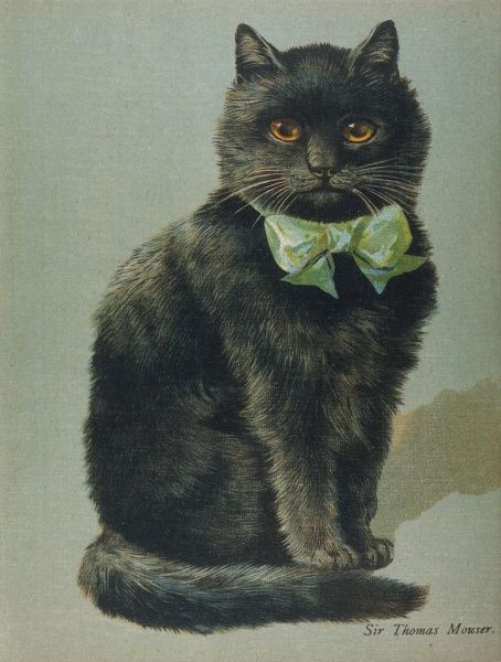 A handsome black cat, Sir Thomas Mouser, sits posed with a green ribbon around his neck